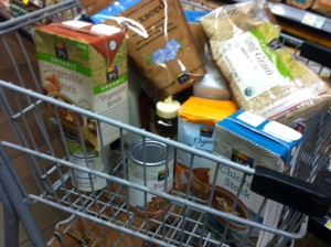 photo.JPG grocerycart